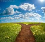 Weg_Giordano-Aita-Fotolia_22112830_XL