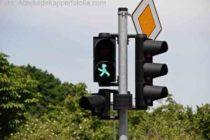 Grünes Licht für E-Roller