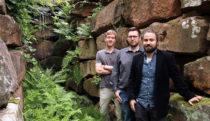 Immergrüne Moos-Fassaden für ein besseres Stadtklima